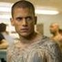tatouage wentworth miller prison break